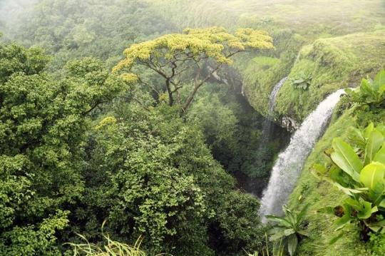 waterfalls_1371560709_540x540
